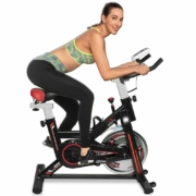 Dolphy Spinner Cycling Recumbent Exercise Bike